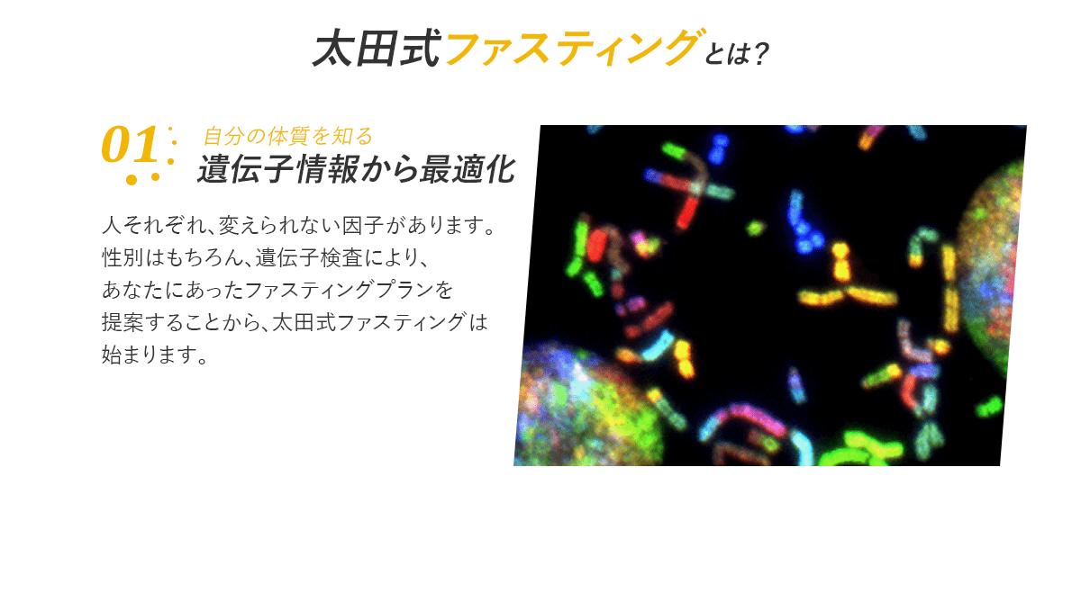 遺伝子情報から最適化
